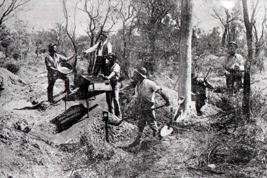 Australian Gold Miners